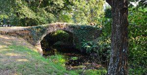 puente-castro