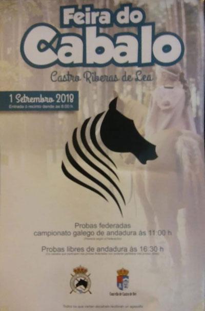 Feira do Cabalo 2018